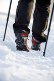 Nordic walking legs in winter Royalty Free Stock Photos