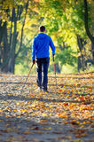 Nordic walking. Man making nordic walking in the park Stock Image
