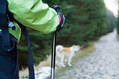 Nordic walking in mountains Royalty Free Stock Photos