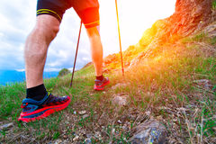 Nordic Walking n te summer Royalty Free Stock Photos