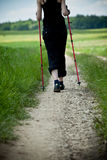 Nordic walking in nature Stock Image