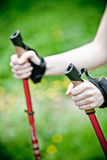 Nordic walking in nature Royalty Free Stock Photos