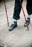 Nordic walking in nature Royalty Free Stock Image
