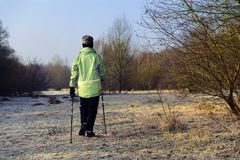 Nordic Walking one day in winter Stock Images