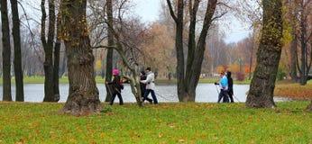 nordic walking in park in autumn Stock Photos