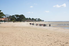 Nordic walking. people hiking. On the beach stock images