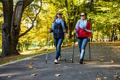 Nordic walking - people working out in park. Nordic walking - active people working out in park Royalty Free Stock Photo