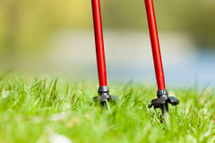 Nordic walking. Red sticks on grass in park Stock Photo