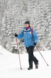Nordic walking in snow Stock Photos