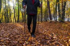 Nordic walking sport run walk motion blur outdoor person legs fo Stock Photo