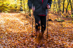 Nordic walking sport run walk motion blur outdoor person legs fo Royalty Free Stock Photos