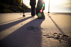 Nordic walking sport run walk motion blur outdoor person legs ra. Feet cultivating man nordic walking on the beach Royalty Free Stock Photography