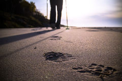 Nordic walking sport run walk motion blur outdoor person legs st. Feet cultivating man nordic walking on the beach Royalty Free Stock Images