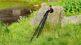Nordic walking on the spring park Royalty Free Stock Image