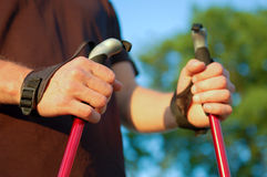 Nordic walking in summer. Closeup of man's legs with nordic walking poles Royalty Free Stock Image