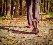 Nordic walking Stock Image