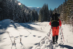 Nordic walking in winter. Nordic walking in the mountains in winter Royalty Free Stock Photography