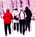 Nordic walking in winter Stock Photos