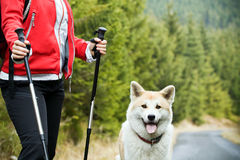 Nordic Walking With Dog Royalty Free Stock Photography