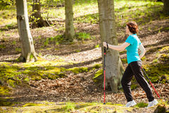 Nordic walking. Woman hiking in the forest park. Stock Images