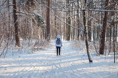 Nordic walking. Woman in a white jacket with a backpack hiking in a cold forest. Scenic beautiful landscape with snow Stock Images