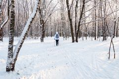 Nordic walking. Woman in a white jacket with a backpack hiking in a cold forest. Scenic beautiful landscape with snow. Nordic walking. Woman in a white jacket Royalty Free Stock Photography