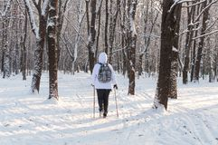 Nordic walking. Woman in a white jacket with a backpack hiking in a cold forest. Scenic beautiful landscape with snow. Nordic walking. Woman in a white jacket Royalty Free Stock Image