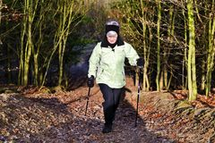 Nordic Walking in the woods Stock Image