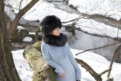 Nordic woman. Portrait of beautiful woman in a winter forest Stock Photo