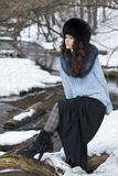Nordic woman Stock Images