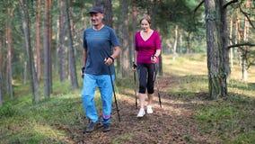 Nordico che cammina - le coppie senior attive sulla foresta trascinano archivi video