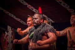 NORDinsel, NEUES SEELAND 17. MAI 2017: Schließen Sie oben von einem Tamaki Maori-Führermanntanzen mit traditionsgemäß tatooed Ges Lizenzfreies Stockbild