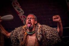NORDinsel, NEUES SEELAND 17. MAI 2017: Tamaki Maori-Mann, der heraus Zunge mit traditionsgemäß tatooed Gesicht und herein haftet Stockfotografie
