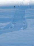 Nordische Skifahrenspuren in den französischen Alpen Stockbild