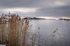 Nordisk kustlinje Arkivfoton