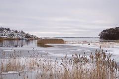 Nordisk kustlinje Arkivbild