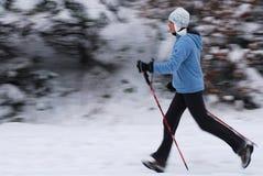 nordiskt gå Fotografering för Bildbyråer