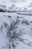 Nordiskt landskap med boahouses Arkivbild