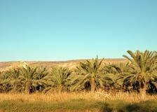Nordisrael. Stockfotografie