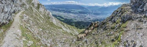 Nordkette山在蒂罗尔,因斯布鲁克,奥地利 图库摄影