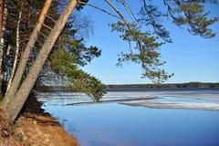 Nordlandschaft in Finnland april Lizenzfreie Stockfotos