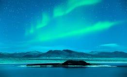 Nordlichtaurora borealis über Bäumen Stockbild