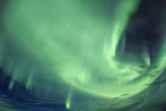 Nordlichter im Himmel von Island Stockfotografie