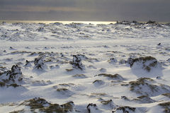 Nordlichter im Himmel von Island Lizenzfreie Stockfotografie