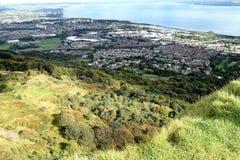 Nordlig Belfast Lough - - Irland Royaltyfri Bild