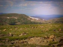 Nordlig Colorado Estes Park Colorado Rocky Mountain nationalpark Royaltyfria Foton