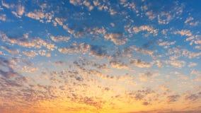 Nordlig himmel för majestätisk afton, yrkesmässig tidschackningsperiod, inget fladdrande, inga fåglar stock video