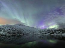 Nordlig lightspanorama av Skandinavien Norge arkivfoto