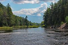 Nordlig Ontario flod Arkivfoto