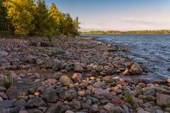 Nordlig strand med stenRyssland Ladoga sjön Royaltyfri Fotografi
